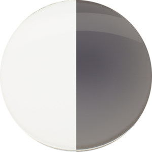 Transition Gray